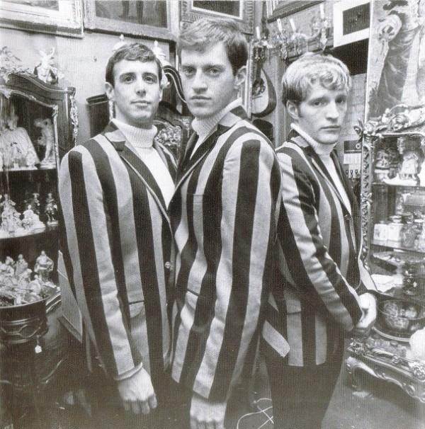 Cyrkle Zebra Costumes